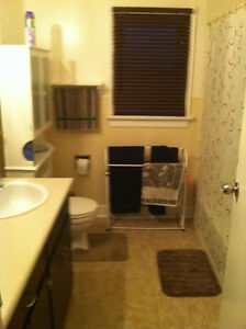 Roommate Wanted for Shared Accommodations Regina Regina Area image 4