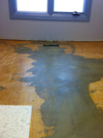 Flooring and home renovations