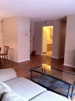 Kingsville: 4 Bedroom condo style Apt available for Oct