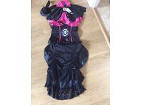 Ladies size 8-10 Halloween costume