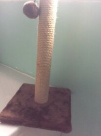 Cat Scratching Post (New)