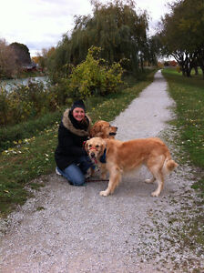 Your Professional Pet Sitter Sarnia Sarnia Area image 6