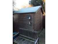 6x8 foot garden shed £60