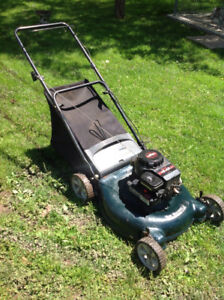 Gas push mower