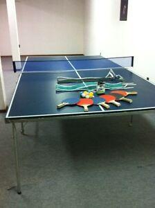 Pin Pong Table
