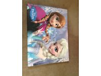 Frozen canvas wall hanger - New