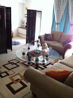 Furnished two bedrooms apartment for sublet/rent all included