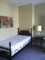 ALL INCL./FULLY FURN. Room in SANDY HILL, 3 blocks UofO, Sept 1