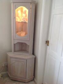 Light coloured corner unit with cupboard, shelves & light.