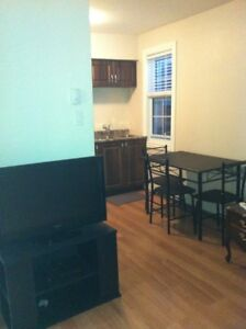1 Bedroom Apartment furnished free wifi and  sattelite