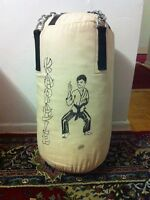 Punching Bag Including Boxing Gloves