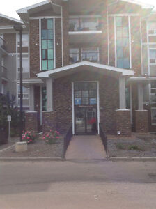 ***Upgraded 1 Bedroom with AC in desirable South terwillegar***