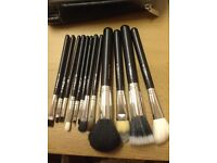 12 pcs Black and Silver makeup Brush Set with a case