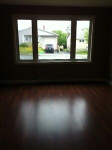 Beautiful Main Level 3 Bedroom St. John's Newfoundland image 8