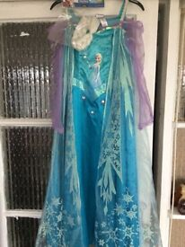 Frozen costume 9-10yrs with hair braid