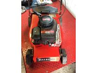 Champion petrol push lawnmower
