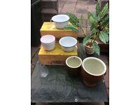 Planters, Pots & Potties