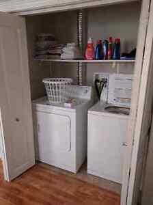 Room for rent in two bedroom basement apartment