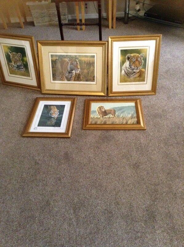 Stephen Gayford prints