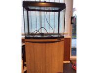 Aqua one start 600 fish tank and stand