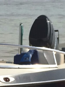 Ski & Tow PYLON for Outboard Boats.