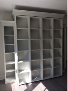 Bookcase wallbed/murphy bed/queen bed