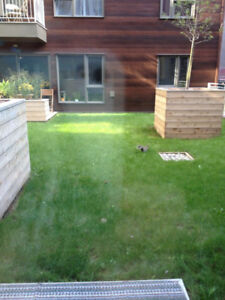 3 1/2 Condo at DownTown Montreal with backyard