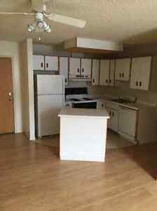 1 Bedroom plus Den Suite available IMMEDIATELY
