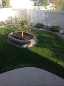Lawn care / garbage and rubbish removal / eavestrough cleaning