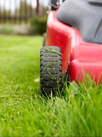 Contract free lawn maintenance