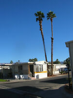 Palm Springs area for sale or rent
