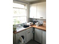 Light Room in Lovely Clean Flat Bills Inc. N19
