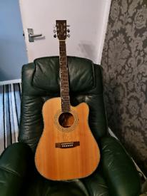 X2 tanglewood mr730fx acoustic guitars