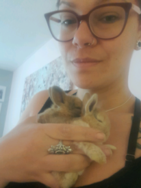 Bunnies - very affectionate(ready for collection)