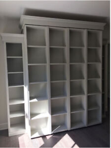 bookcase/wallbed/murphy bed