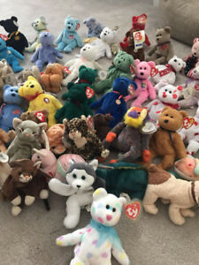 TY Beanie Baby Bears and more