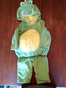 Dragon costume 12M