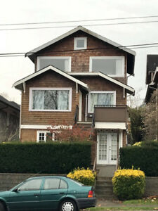 Roommate wanted beautiful 3 bedroom house