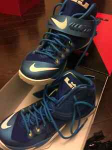 LeBron Nike Zoom Soldier Vlll Size 10