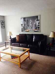Beautiful 3+1 Bedroom House in Forest Hill Kitchener / Waterloo Kitchener Area image 5