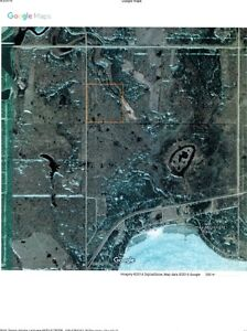 40 Acres undeveloped 3/4 mile from Turtle Lake can be yours!