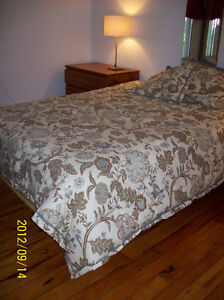 Vacation/Short Term DOWNTOWN  July 20 - July 30  Two Bdrm