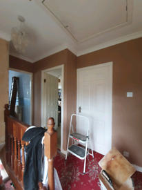 CM Plastering :20% off until end of May