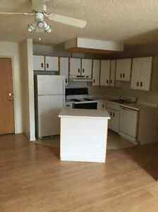1 Bedroom Suite available - 934 Rosser Ave
