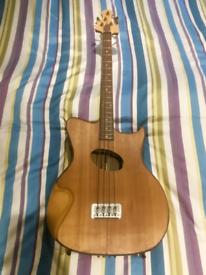 'Michael Gillett' 4 string acoustic bass prototype