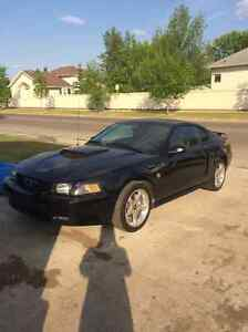 2004 Ford Mustang 40th Anniversary GT Coupe (2 door)