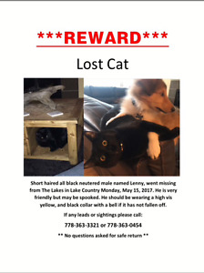 Please bring lenny home