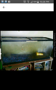 Fish tank 1 foot wide 53 cm high 4 feet long