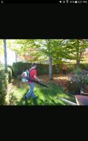Ramassage de feuilles et plus **estimation gratuit **