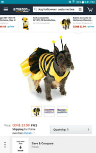 Medium size bumble been doggy outfit